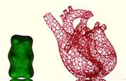 3D-Drucker erstellt Gerüst für menschliches Herz