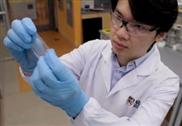 Neue E-Haut aus Polymer heilt sich selbst