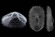 MIT-Maschennetz verwandelt sich in Gesicht
