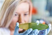 Intelligente Werkstoffe für biologisch inspirierte Elektronik
