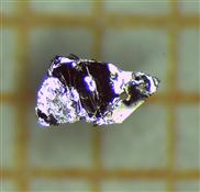 Neues Quantenmaterial mit magnetischen und topologischen Eigenschaften entdeckt