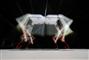 Vierbeiniger Roboter macht Forschung weltweit vergleichbar