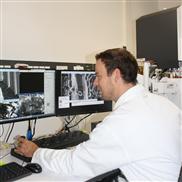 Bayreuther Forscher entwickeln neue Biomaterialien aus Spinnenseide