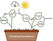 Natürliche Beschichtungen nun aus Biomasse