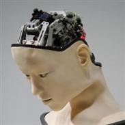 """Spezialisierte """"Gehirne"""" für agilere Roboter"""