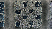 Frisch gedruckte Magnete