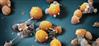 Krebs: Immuntherapie gezielter einsetzen