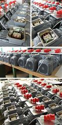 Modifizierung von Getriebemotoren