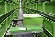 Automation im Kleinteilelager – Shuttle oder doch RBG?