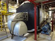 Neuer 11 MW-Weishaupt-Monoblockbrenner für Fernwärme Siggenthal